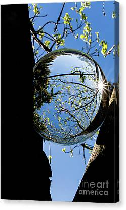 Crystal Reflection Canvas Print by Deborah Klubertanz