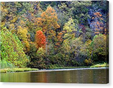 Current River Fall Canvas Print by Marty Koch