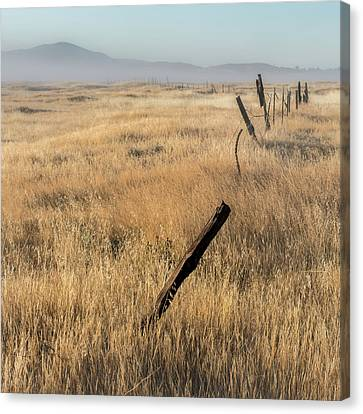 Barbed Wire Fences Canvas Print - Cuyamaca Fenceline by Joseph Smith