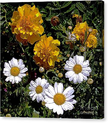Daisies And Marigolds Canvas Print