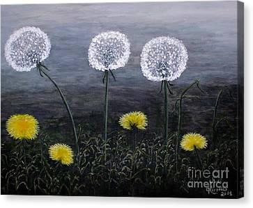 Dandelion Family Canvas Print by Judy Kirouac