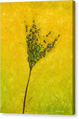 Raindrop Canvas Print - Dandelion Flower - Pa by Leonardo Digenio