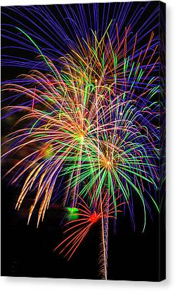Dazzling Fireworks Canvas Print by Garry Gay
