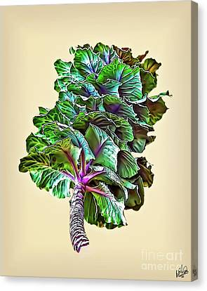 Canvas Print featuring the photograph Decorative Cabbage by Walt Foegelle