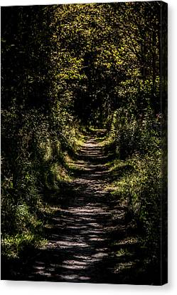 Canvas Print featuring the photograph Deep by Odd Jeppesen