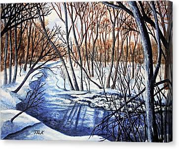 Deep Woods Wisconsin Canvas Print
