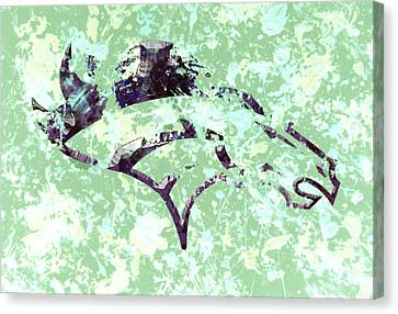 Denver Broncos Canvas Print by Brian Reaves