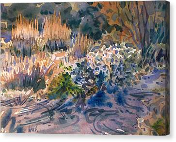 Desert Flora Canvas Print by Donald Maier