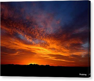 Desert Sunset  Canvas Print by Adam Photohog Jones