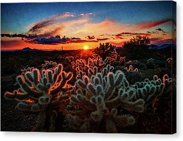Canvas Print featuring the photograph Desert Sunset  by Saija Lehtonen
