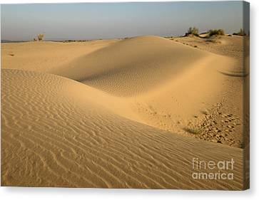 Canvas Print featuring the photograph Desert by Yew Kwang