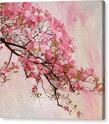 Dogwood Blossom Canvas Print by Jessica Jenney