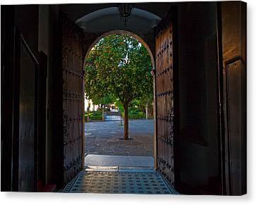 Malaga Canvas Print - Doorway And Arch Between Gardens by Panoramic Images