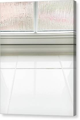 Double Glazed Window Canvas Print by Tom Gowanlock