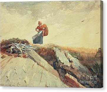 Down The Cliff Canvas Print by Winslow Homer