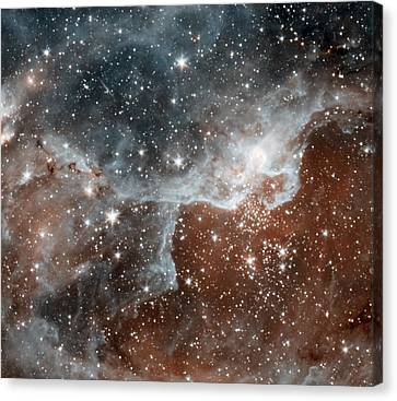 Dr22 In The Cygnus Region Of The Sky Canvas Print by American School