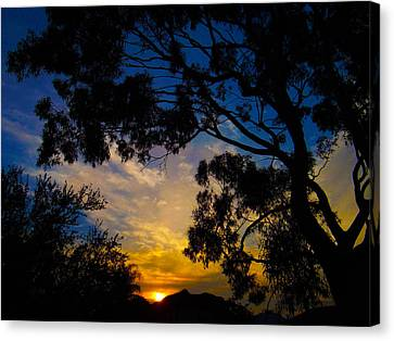 Dream Sunrise Canvas Print