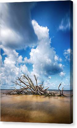 Canvas Print featuring the photograph Driftwood Sky by Alan Raasch