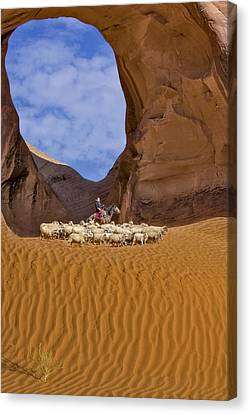 Ear Of The Wind Canvas Print by Susan Candelario