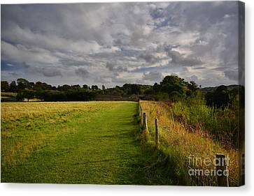 Easby Walks Canvas Print by Nichola Denny