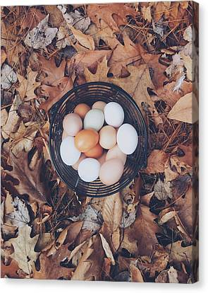 Egg Canvas Print - Eggs by Happy Home Artistry