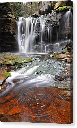 Canvas Print featuring the photograph Elakala Fall by Dung Ma