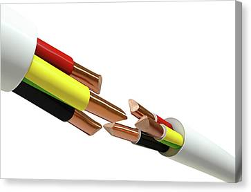 Electrical Cable Cut Canvas Print by Allan Swart