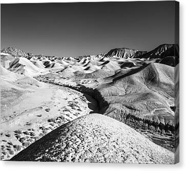 Canvas Print featuring the photograph Elephant Knees And Mud Hills by Alexander Kunz