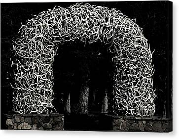 Elk Antlers Gate Jackson Hole Wy Canvas Print by Christine Till