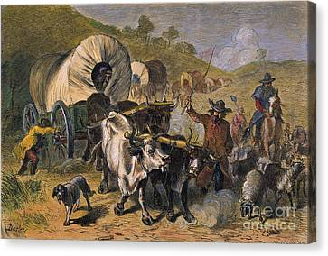 Emigrants To West, 19th C Canvas Print by Granger