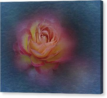 Canvas Print featuring the photograph End Of September 2016 Rose by Richard Cummings
