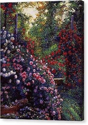 Evening Roses Canvas Print by David Lloyd Glover