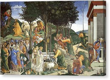 Events In The Life Of Moses Canvas Print by Sandro Botticelli