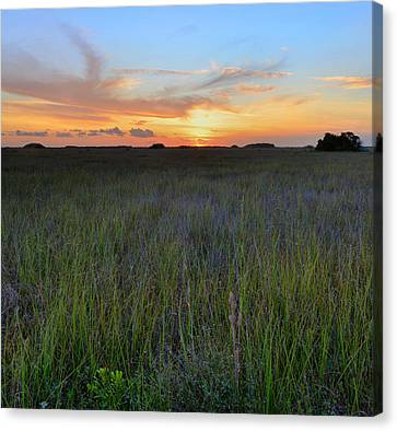 Canvas Print featuring the photograph Everglades Sunset by Stephen  Vecchiotti