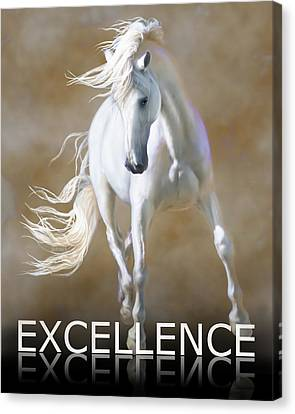 Excellence Canvas Print by Barbara Hymer