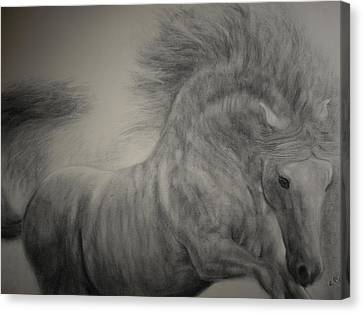 Exuberant Canvas Print by Adrienne Martino