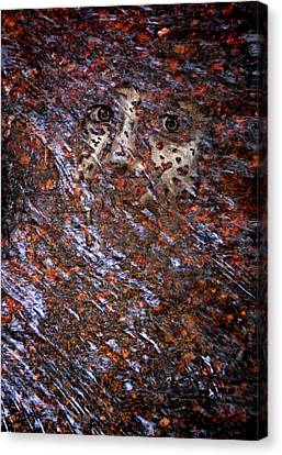 Face In The Stream Canvas Print