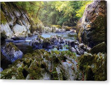 Fairy Glen - Wales Canvas Print by Joana Kruse