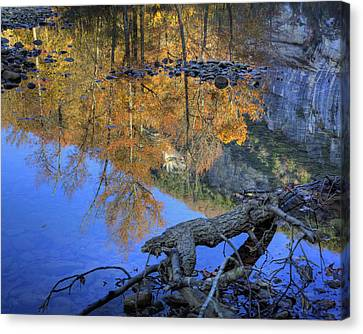 Fall Color At Big Bluff Canvas Print by Michael Dougherty