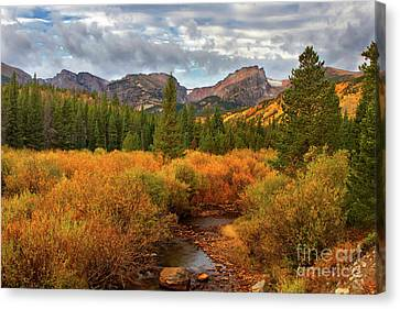 Fall In Rocky Mountain National Park Canvas Print