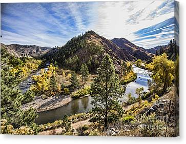 Fall On The Poudre Canvas Print
