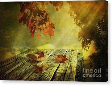 Maple Canvas Print - Fallen Leaves by Veikko Suikkanen