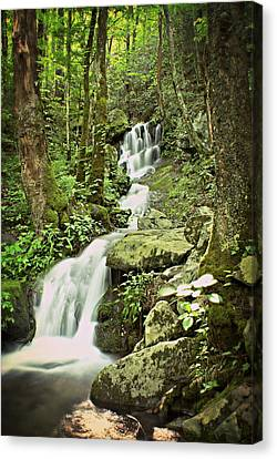Falls In The Smokies Canvas Print by Marty Koch
