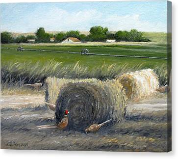 Farmland Canvas Print