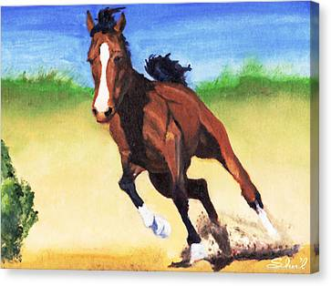 Canvas Print featuring the painting Fast Horse by Sherril Porter