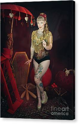Female Circus Performer Canvas Print by Amanda Elwell