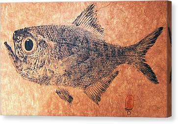 Fenwick Gyotaku Canvas Print by Sam Fenwick