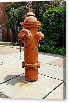 Baltimore City Fire Department Canvas Print - Fire Hydrant by Ben Schumin