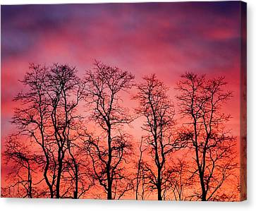 Fire In The Sky Canvas Print by Todd Klassy