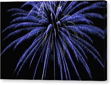 July Canvas Print - Fireworks by Joe Granita